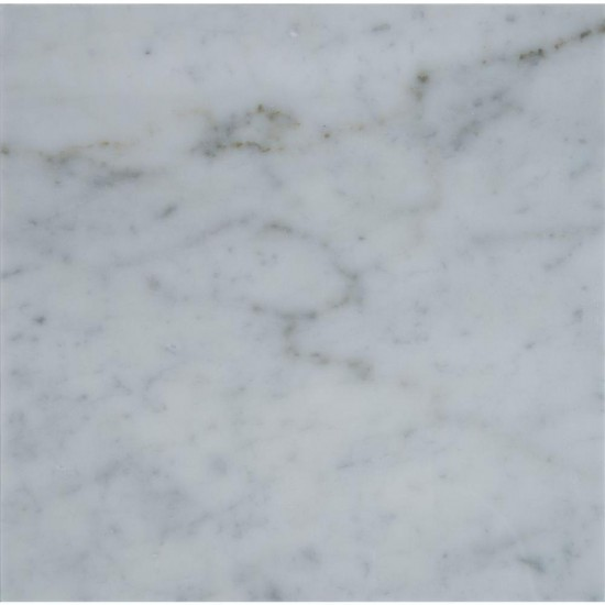 18 in. x 18 in. Italian White Carrara Solid Polished Finish Marble Flooring Tile