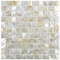 Mother of Pearl Atlantic White pearl shell 1