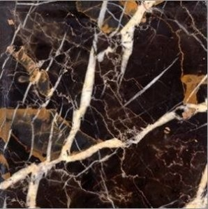 Michelangelo Michael Angelo Marble 12x12 Polished Wall and Floor Tiles
