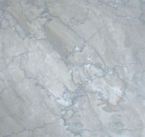 12 in. x 12 in. Temple Grey Solid Polished Finish Marble Flooring Tile